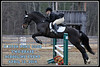 2014 Equestrian : 74 galleries with 1437 photos