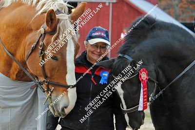 Contry Hill Farm Halloween Gymkhana Horse Show, October 27, 2012