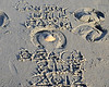 Contry Hill Farm Beach Ride, December 9, 2012 : 1 gallery with 779 photos